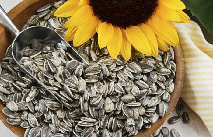 Достаточно употребить горстку семян для избавления от изжоги