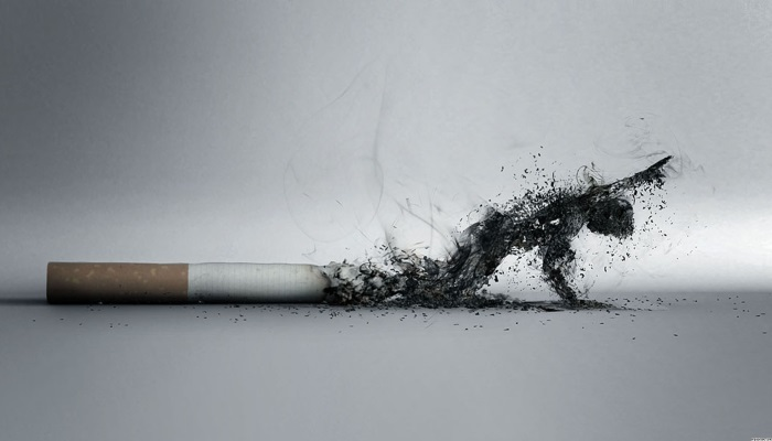 Курени негативно действует на пищеварение