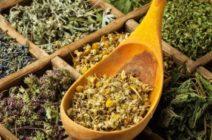 Травы и сборы от изжоги: какие можно использовать, рецепты и эффект от применения