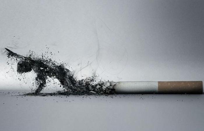 Применение пепла сигарет вызывает негативные последствия